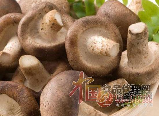 干香菇和鲜香菇的区别有哪些
