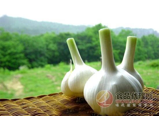 吃大蒜能让大脑更聪明这是真的吗?