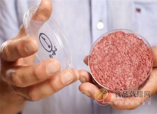 美国人造肉公司Beyond Meat上市涨幅破十年记录