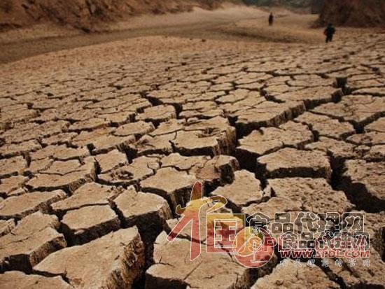 印度马哈拉施特拉邦旱灾加剧