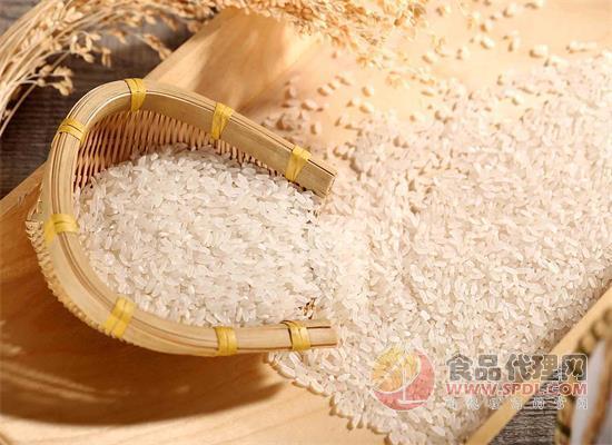 如何挑选好的大米呢?四个方法教你选大米