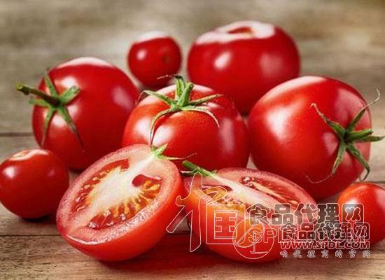 美国开发人工智能机器人采摘西红柿