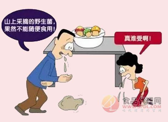 龍陵縣食品安全委員會發布食用野生菌中毒防控公告