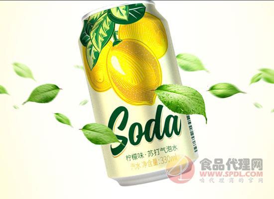 名仁苏打水价格是多少?不含糖让你喝的更尽兴