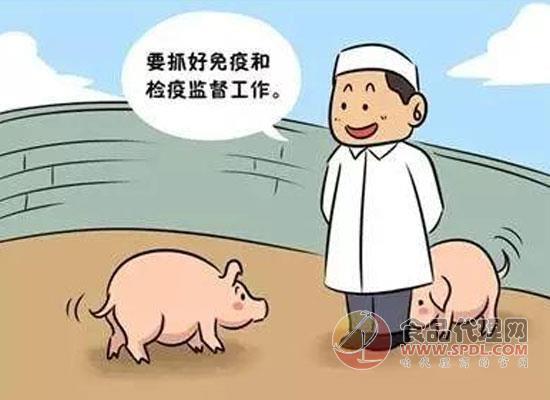 加強豬瘟相關實驗室管理,農業農村部頒發相關政策