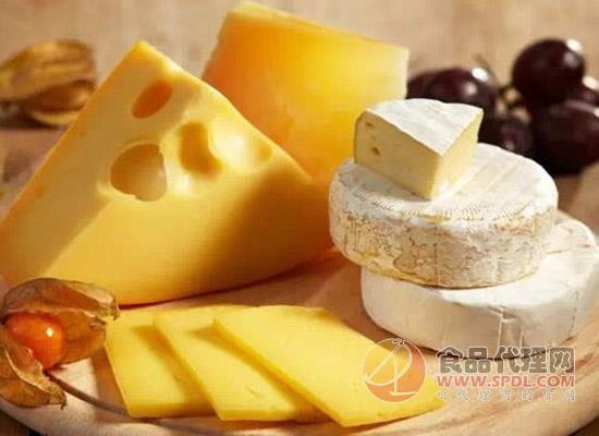 挑选奶酪看什么,制作工艺告诉你