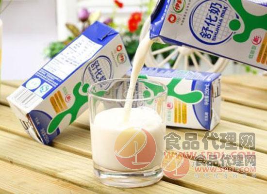 伊利舒化牛奶圖片