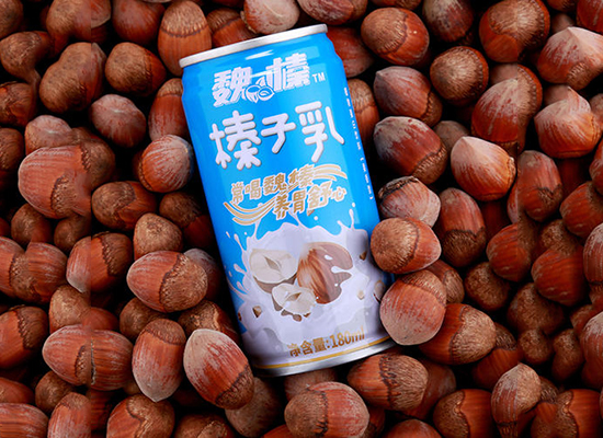 魏榛榛子乳饮料价格是多少,原香顺滑口感