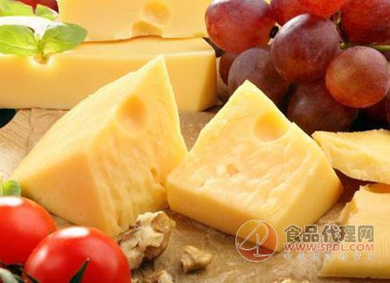 小奶酪撬动大市场,奶酪产业成为奶业振兴的支点