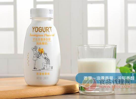 李子园风味酸牛奶味道怎么样,优质奶源清新果香