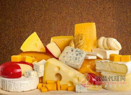 奶酪吃多了会不会上火,奶酪和芝士有什么区别