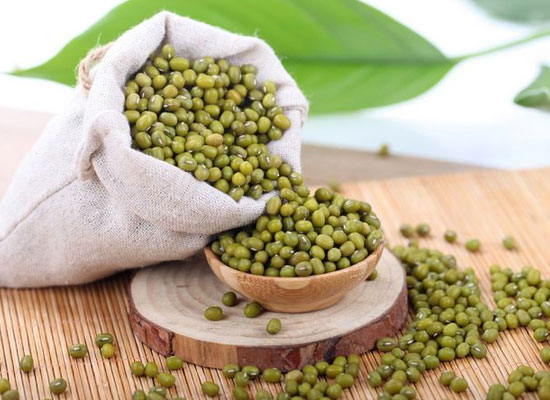綠豆怎么挑,從哪幾個方面挑選綠豆