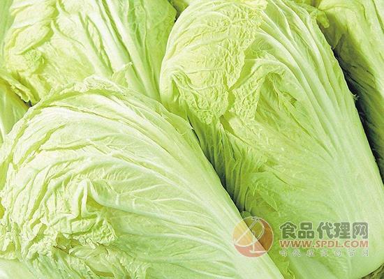 吃大白菜減肥好嗎,大白菜隔夜還能吃嗎