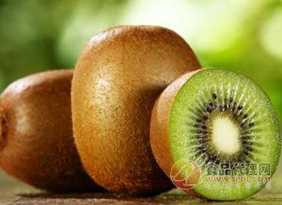 猕猴桃太软了是不是坏了,太软的猕猴桃还能吃吗