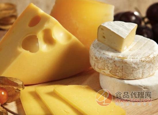 奶酪的产地有哪些,哪几个国家生产奶酪