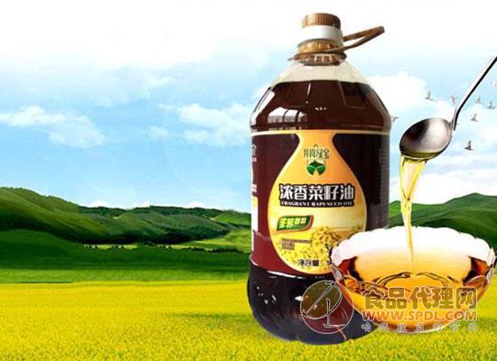 井岗绿宝浓香菜籽油价格是多少,天然好味精选优质菜籽