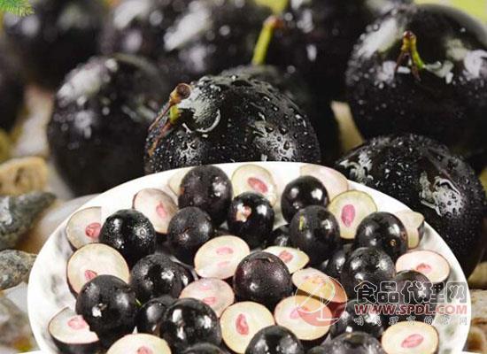 圣瑪麗奧嘉寶果好吃嗎,美味果實酸甜可口