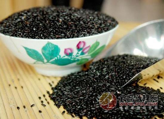 怎么挑选好的黑米,看完优质好米不再错过