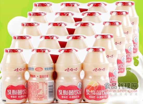 娃哈哈乳酸菌饮品一箱多少钱,娃哈哈乳酸菌价格是多少