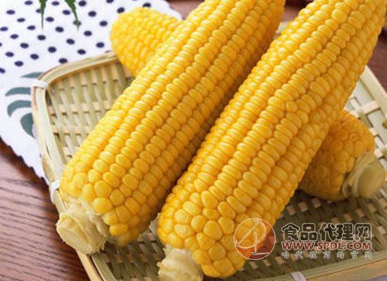 隔夜的熟玉米还能吃吗,晚上吃玉米有助消化吗