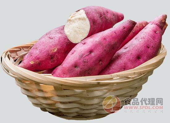 女人天天吃红薯好吗,红薯早上吃对身体好吗