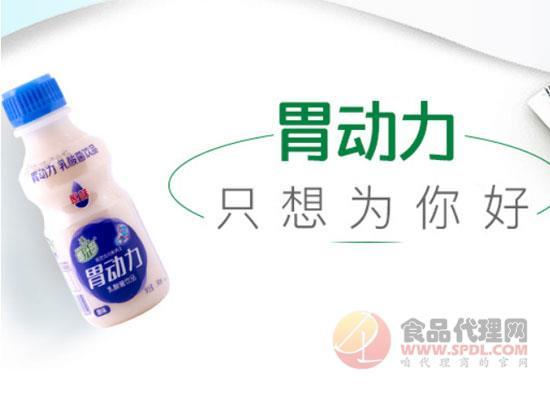 椰汁岛乳酸菌饮品价格是多少,享受品质生活