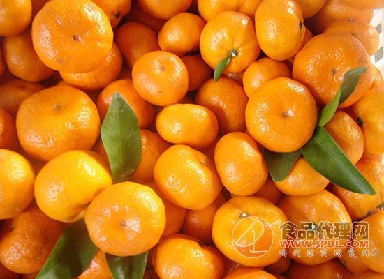 橘子品种有哪些,吃橘子有什么注意事项