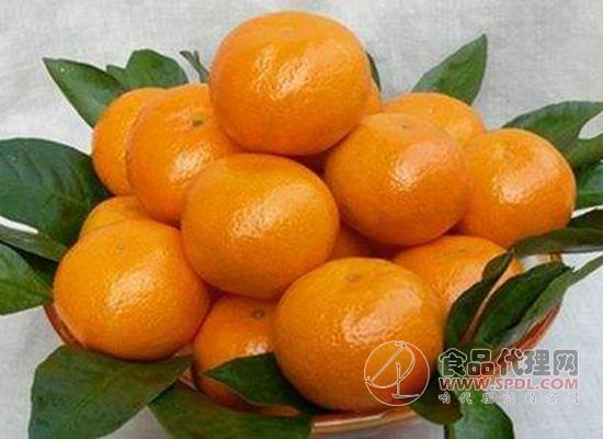 橘子怎么选购,吃橘子有哪些食用建议