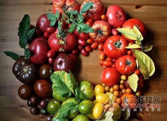 蔬菜的分類有哪些,四大分類早知道