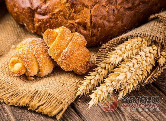 如何挑選全麥面包,這些你都知道嗎