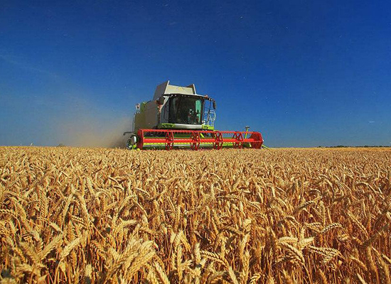 糧食安全人人有責,全國糧食安全宣傳周啟動