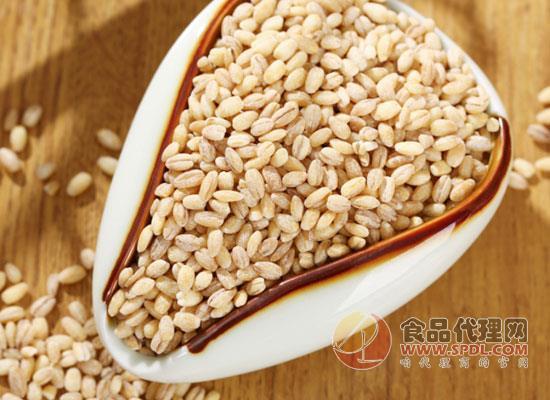 大麦的营养价值有哪些,喝大麦茶的好处