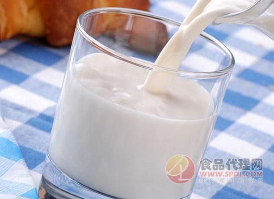 特侖蘇和純牛奶哪個好,看完本文你就明白了