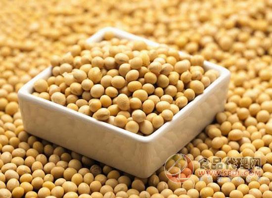 大豆怎么挑选,从这三个方面入手