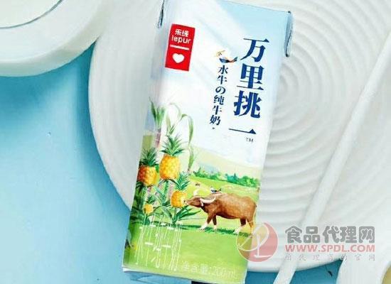 好牛奶万里挑一,乐纯新品纯牛奶上线