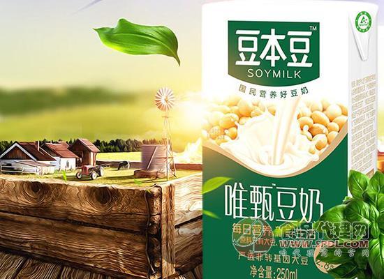 豆本豆唯甄豆奶價格是多少,美味營養健康好喝
