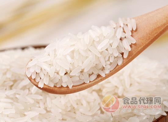 國寶橋米家香米價格是多少,一碗好米飯是種出來的