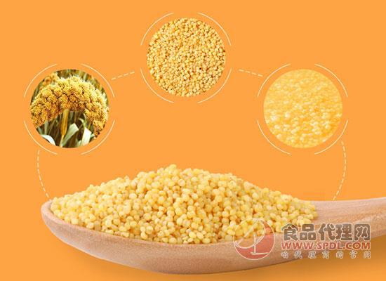 什么牌子的黄小米好吃,十月稻田黄小米值得购买