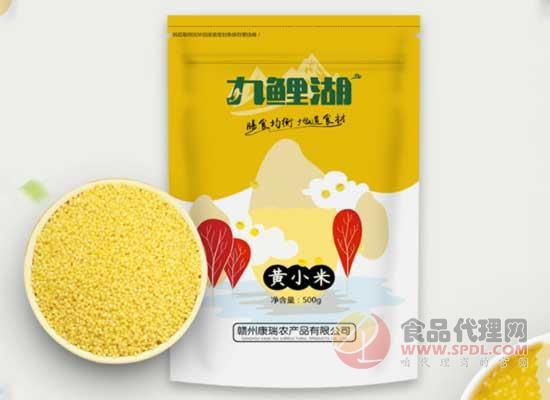 九鯉湖黃小米好在哪里,陽光的味道