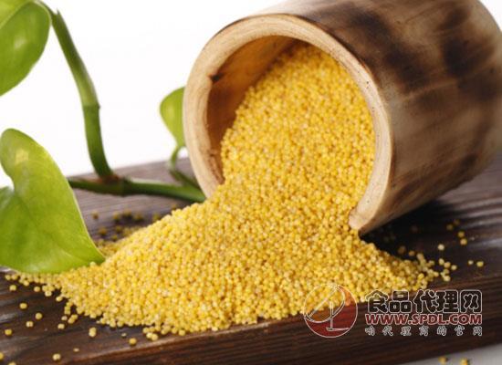 贡一汇黄小米多少钱,缔造优质黄小米
