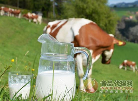 2019生鲜乳行业监管部门以及政策