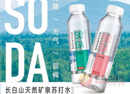 """農夫山泉""""SODA""""蘇打礦泉水上市,兩種口味,定價4元"""