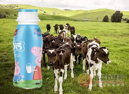 小豬佩奇AD鈣奶多少錢,精選高標準優質奶源