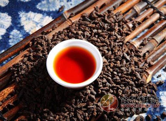 普洱茶可以放多久,這你知道嗎