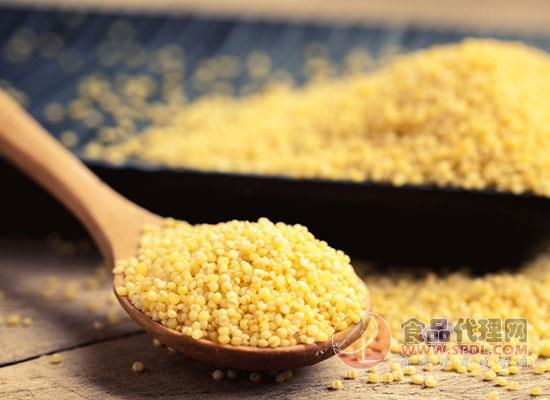 方家鋪子黃小米多少錢,珠圓玉潤
