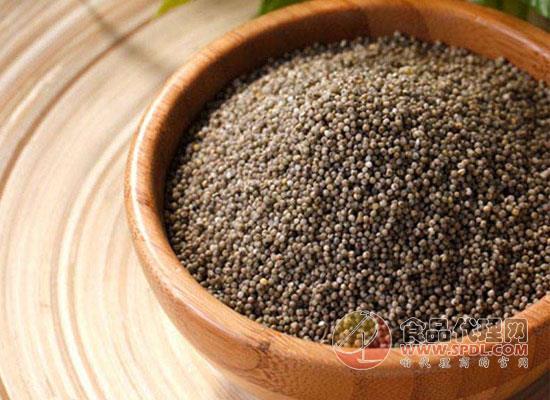 黑小米和黃小米的區別有哪些,三個方面讓你認清這兩者