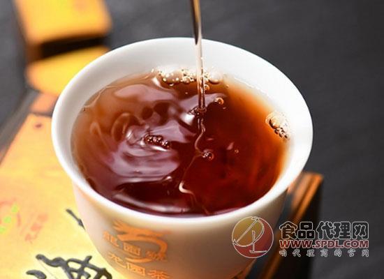 龍園號普洱茶好喝嗎,每一口都是享受