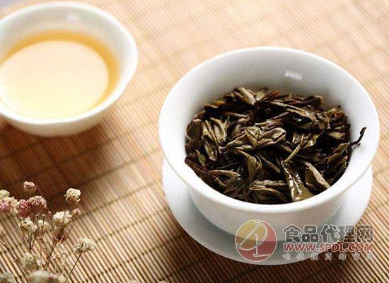 什么是白茶,白茶的產地在哪