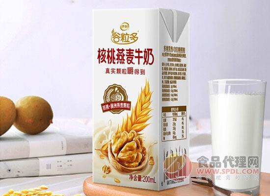 伊利核桃燕麥牛奶價格,你的營養早餐之選
