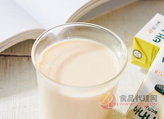 賓格瑞香蕉牛奶好在哪里,口感與營養兼得